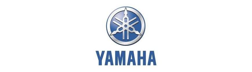 YZF-R1 2004-2006